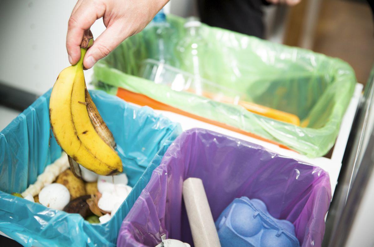 生ゴミ、バナナの皮