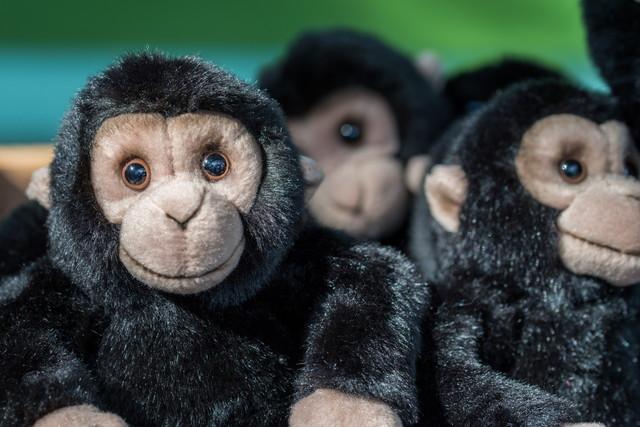 猿のぬいぐるみ