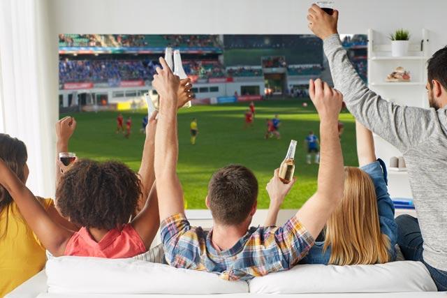 テレビ スポーツ観戦