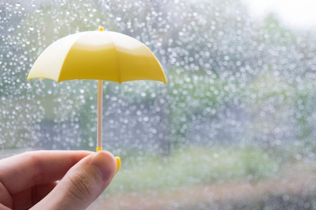小雨の日が最適