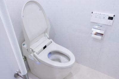便座のフタが開いたトイレ、手すりがある