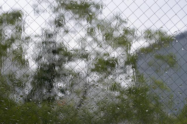 雨に濡れた窓