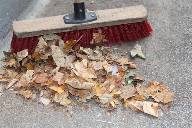 枯葉をブラシで掃除