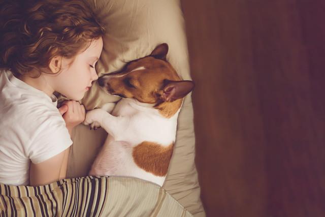 眠る子供と犬