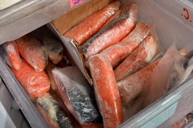 冷凍庫の中の魚の切り身