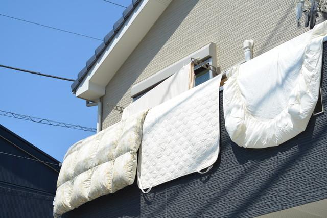 干されている羽毛布団