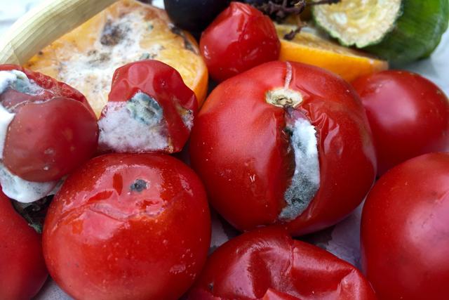 カビが生えた野菜と果物