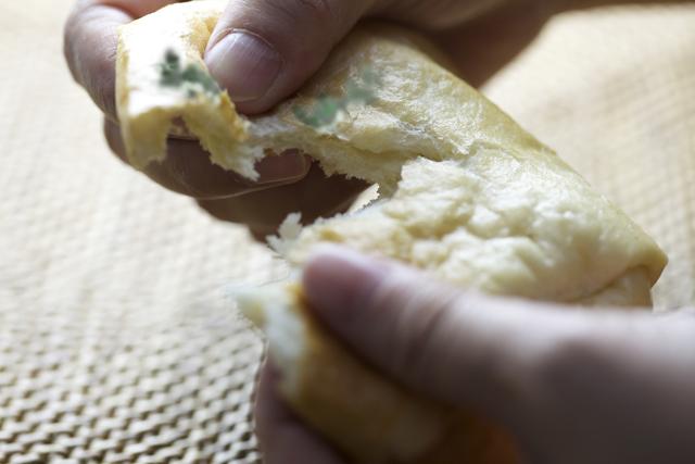 カビが生えたパンをちぎる