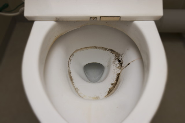 トイレのさぼったリング