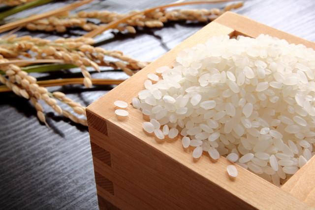 お米と稲穂