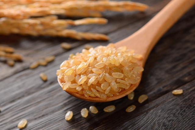 玄米のイメージカット