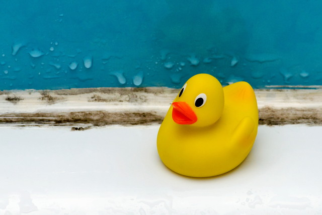 お風呂とおもちゃとカビ