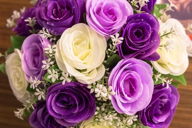 紫色系の花