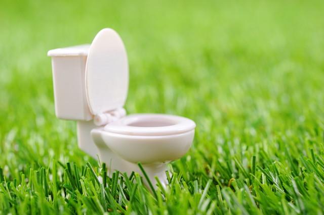 トイレのおもちゃ