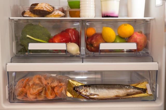 冷蔵庫と魚