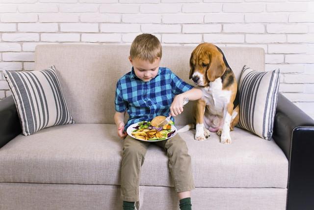 ソファーと犬と子供