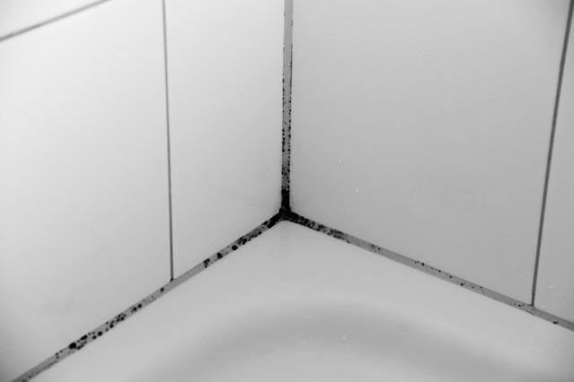 部屋の隅のカビ