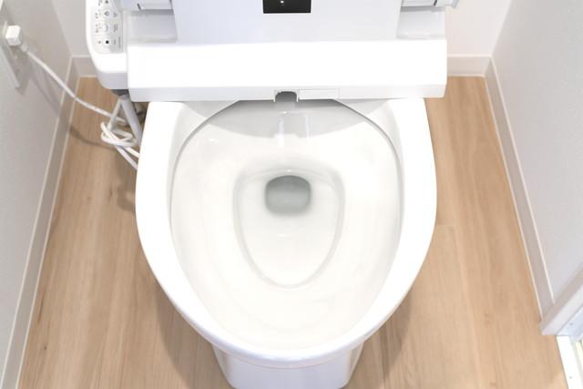 蓋が開いたトイレ