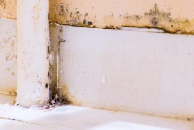 お風呂の黒ずみ
