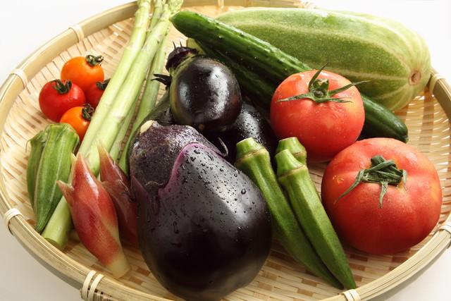 日本の夏野菜