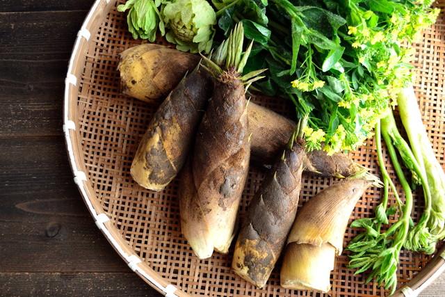 ざるに盛り合わせた筍と山菜