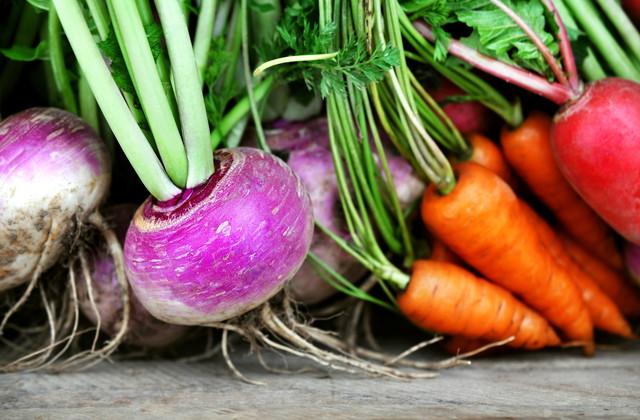 いろいろな根野菜
