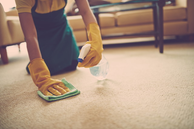 絨毯を掃除する主婦