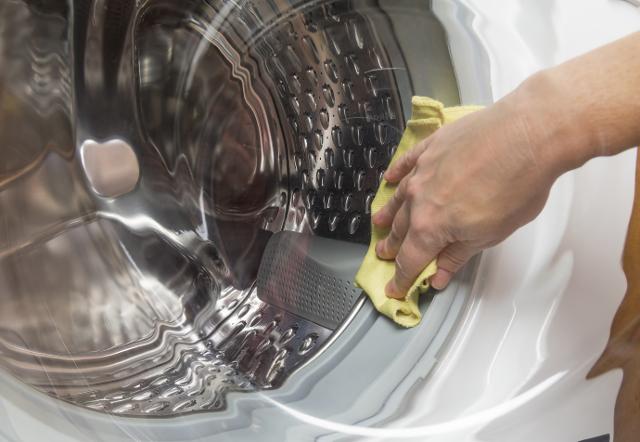 洗濯機ふき掃除