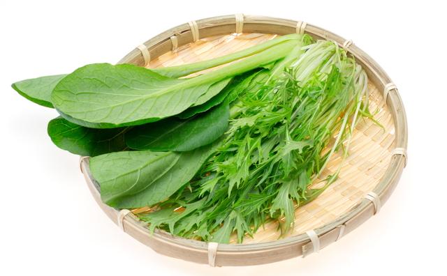 小松菜と水菜