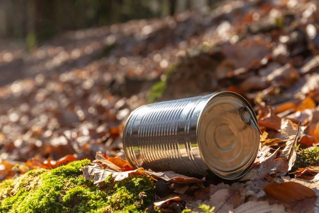 森に捨てられた空き缶