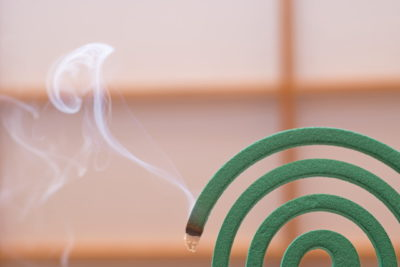 和室と蚊取り線香