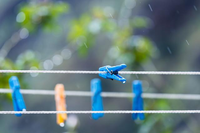 雨に濡れた洗濯バサミ