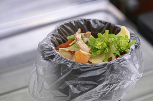 野菜の生ゴミ