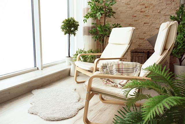 観葉植物がある部屋