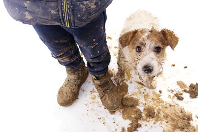 泥汚れの子供と犬