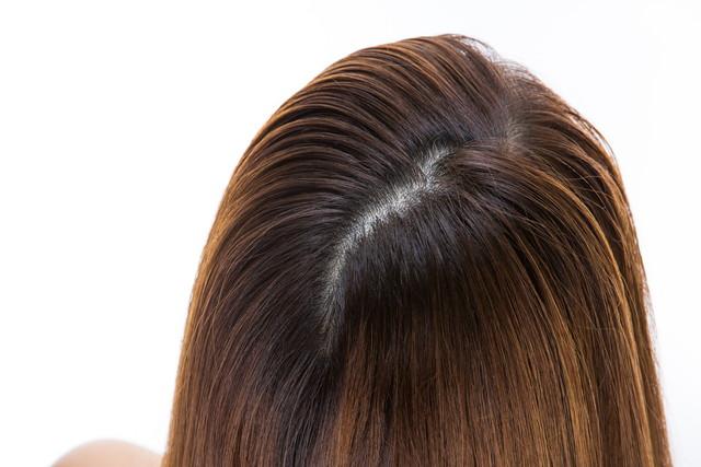 女性の後頭部