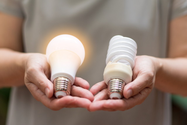 両手に置かれた形の違う電球