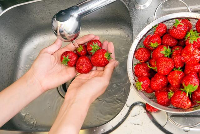 イチゴを洗う