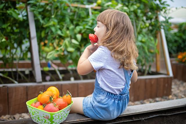 トマトを食べる子供