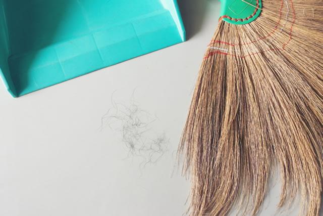 床に落ちた髪の毛を掃除する様子