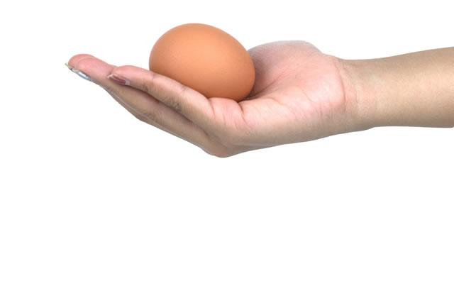 優しく手に持った卵