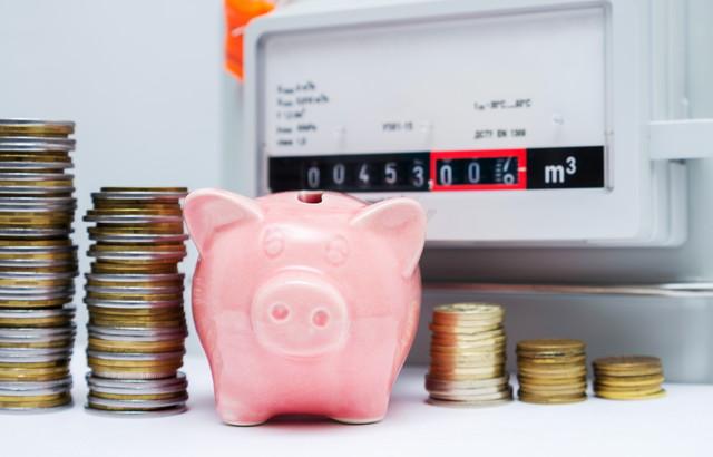 ガスメーターと豚の貯金箱