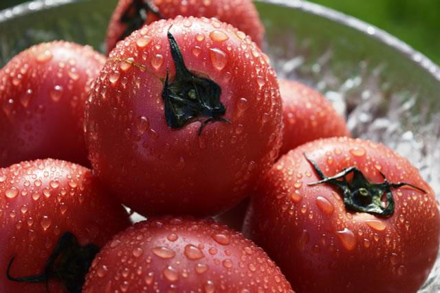 水に濡れているトマト