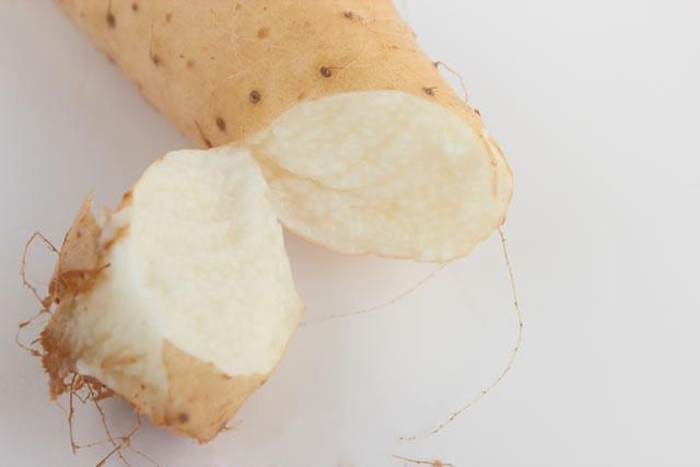 長芋の切り口