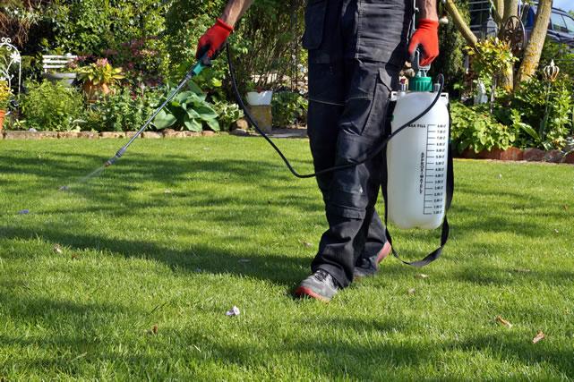 庭に除草剤をまく