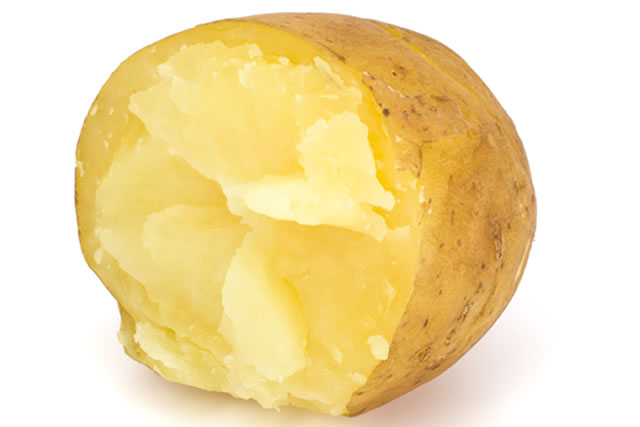 ジャガイモの断面図