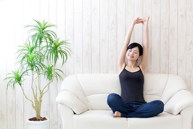 植物の隣で体を伸ばす女性