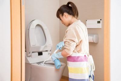 便器の中を洗う女性
