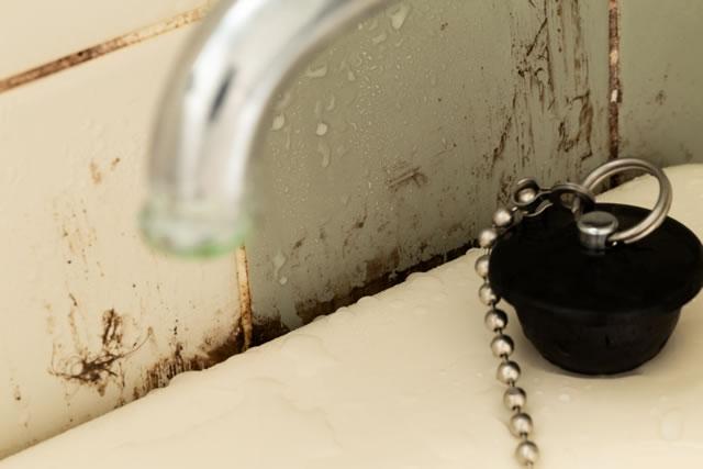 浴室のカビ