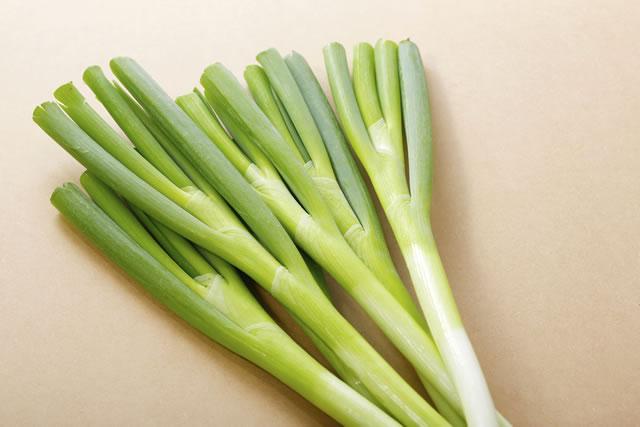 長葱 Green Onion